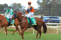 Dottie does it in a dead heat at Benalla