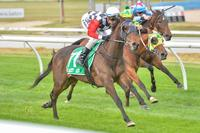 EZR Dashing to Adelaide for a crack at the Australasian Oaks