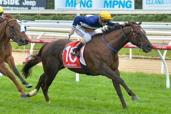 Plenty to see in Fly's Mornington victory