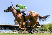 Ellerton Zahra Racing continues to fly high on Kyneton Cup day