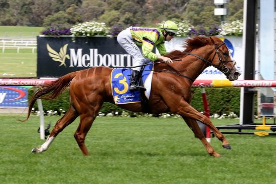 Crystal helps owners live the dream at Sandown