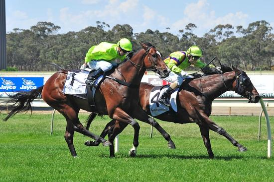 Quirky Justice gets it done at Bendigo