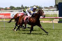 Ellerton Zahra Racing fires again with Caulfield treble