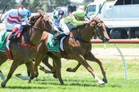 Maiden win no longer eludes Eluded after Werribee success