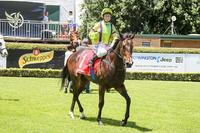 Grand broodmare gets another EZR winner at Mornington
