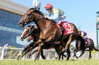 Three chances for Ellerton Zahra Racing to make a fast start to spring