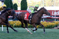 Freeze Over makes hot debut for Ellerton Zahra Racing at Valley