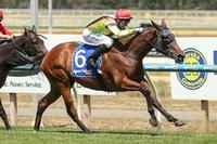 New tactics help Last light up Ballarat