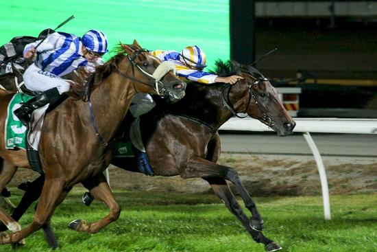 Into Rio simply outstanding first-up at Cranbourne