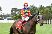 Rare Callow ride produces a Mornington victory