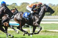Redwood filly shines at perfect time at Kyneton