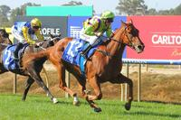 Social's ability is not a Secret after Benalla victory