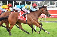 Exceltara's late charge brings Caulfield victory