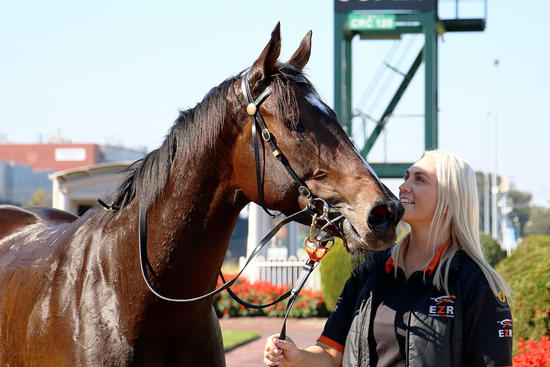 New and improved Creativity scores first-up at Caulfield