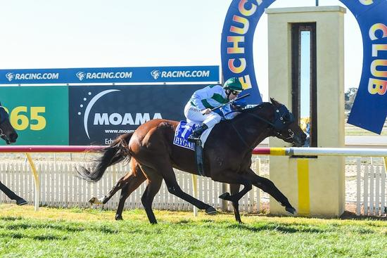 Blinkers do the trick for Cape To Cairo at Echuca