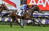Aristia going for Oaks crown at Flemington