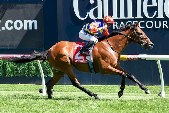Riordan helps Rock get the gold at Caulfield