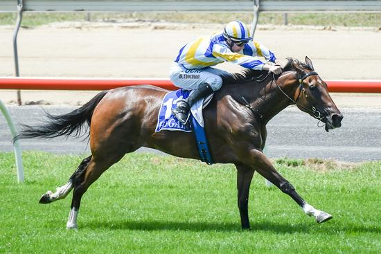 Another Zacinto winner for EZR at Seymour