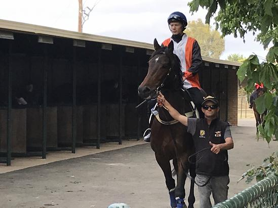Werribee jumpout