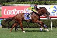 Quick back-up suits Burgonet perfectly at Sandown