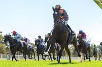 Seymour win perfectly timed by Smart Missile mare