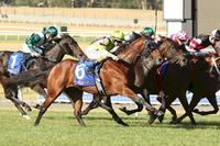 Limeshow turns it on first-up for Ellerton Zahra Racing at Sandown