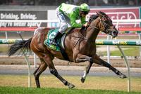 International win for Part Time Lover at Geelong