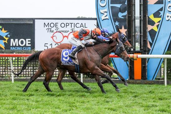 Brave Darmasun fights for Moe maiden win