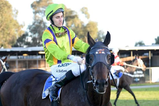 Consistent Confluence gets deserved Echuca win