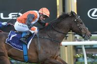 Prezado powers to another Flemington straight win