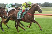 Some say Parma...but Parmie's a winner at Sandown