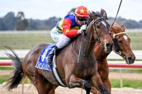 Dirty Deeds might turn out to be cheap after Echuca win