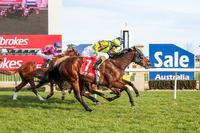 High Beam shines again at Sale