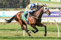 Heir's day to shine at Bendigo