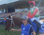 Confidential- A Nice Win at Canberra