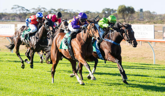 Speedbird lands successive wins