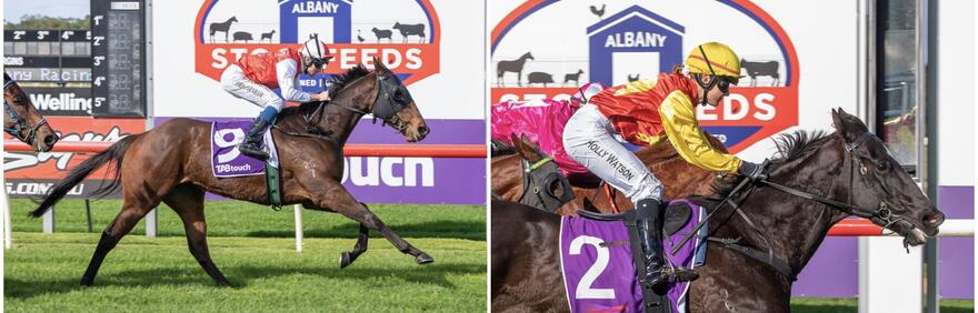Pearce double at Albany