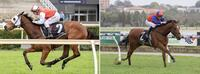 Belmont double for Pearces