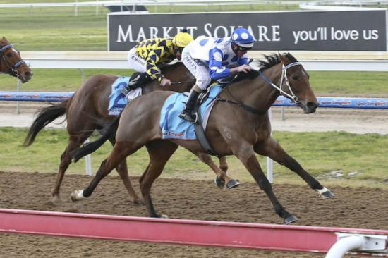Apple Thief Makes Easy work of rivals Winning his 2nd race at only his 6th Race start