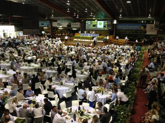 Unique Opportunity 2015 Magic Millions Yearling Sales