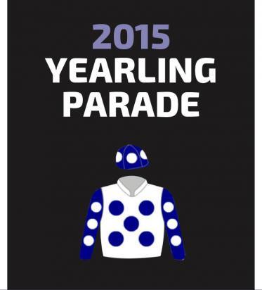 2015 WYLIE DALZIEL ROY HIGGINS RACING 2015 YEARLING PARADE