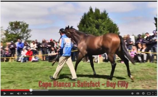 FIRST WINNER FOR CAPE BLANCO