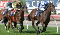 THROSSELL wins ANZAC DAY STAKES for Dalziel Racing - WATCH