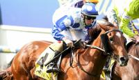 Dalziel pair chasing Group 1 Australian Guineas...and Catch a Fire ready to light up Flemington