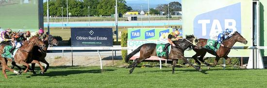 HENPECKER WIN 14OCT16 MULGRAVE CLUB MAIDEN PLATEa.jpg