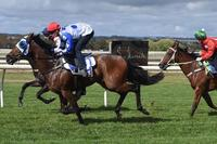 ​Interstate double and a Track Record as Dalziel Racing continues on its winning ways.