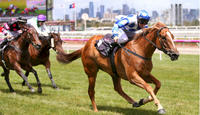 Miss Wonderland targets Magic Millions