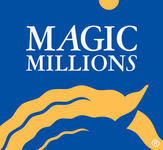 Dalziel Racing secure three yearlings on Day 1 of Magic Millions!