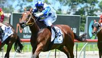Junction draws wide in $250,000 Inglis Classic