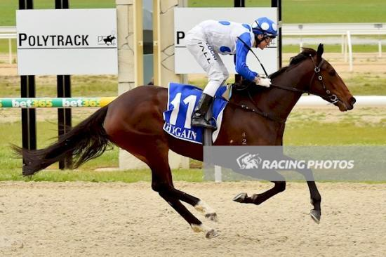 Bring a Rose too strong at Ballarat - take a look, another winner for Dalziel Racing!